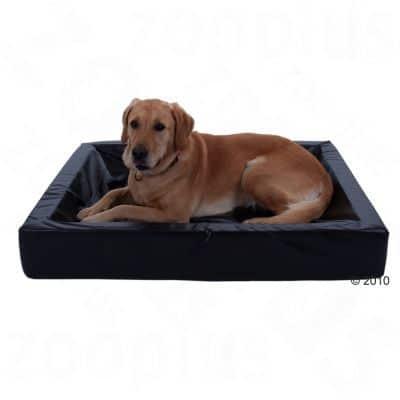 Hundebett und Hundekorb für Labrador.