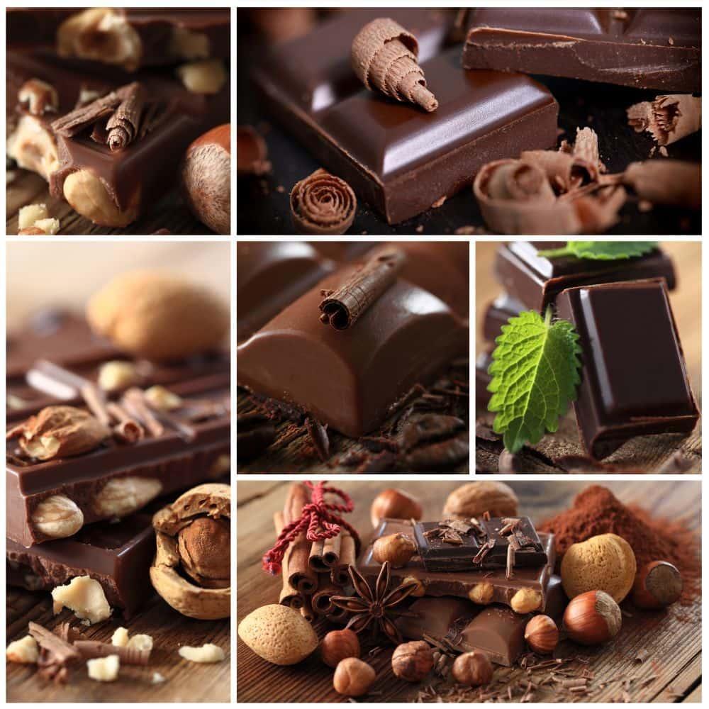 Schokolade für Labrador