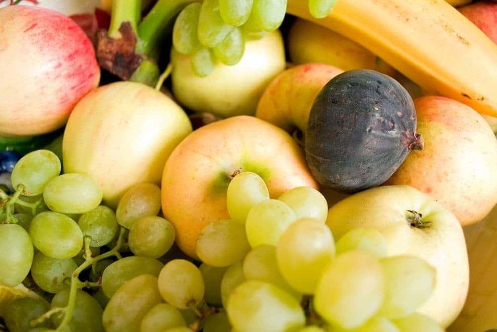 Obst für den Labrador