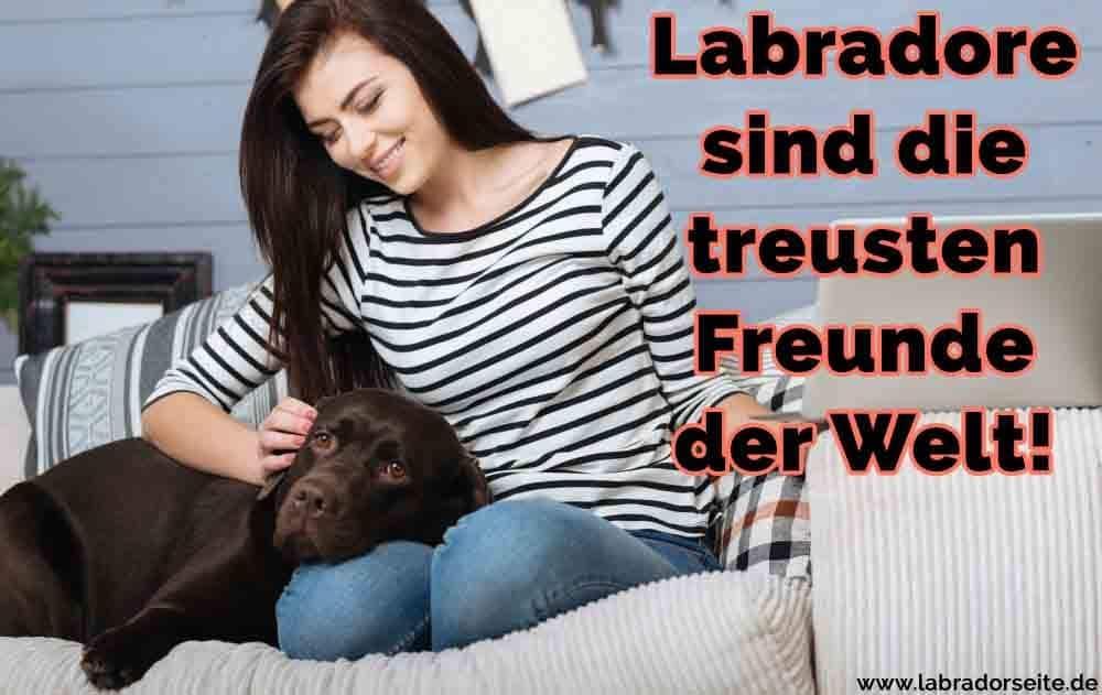 Eine Frau streichelt ihr Labrador auf dem Sofa