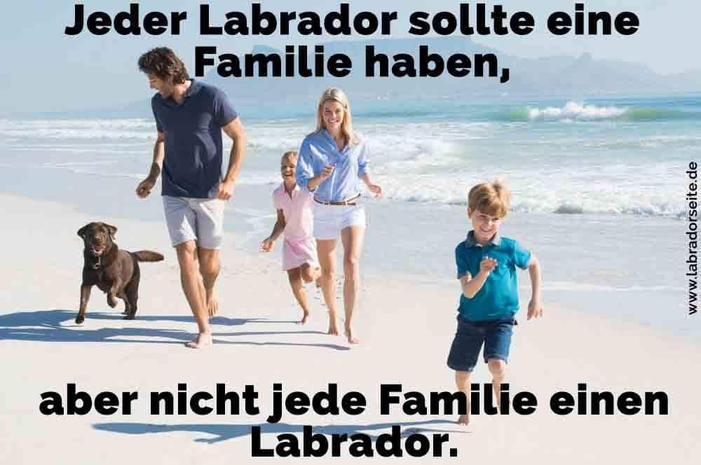Eine Familie und ihr Labrador am Strand
