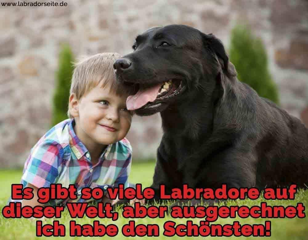 Ein Junge und sein Labrador im Gras liegen