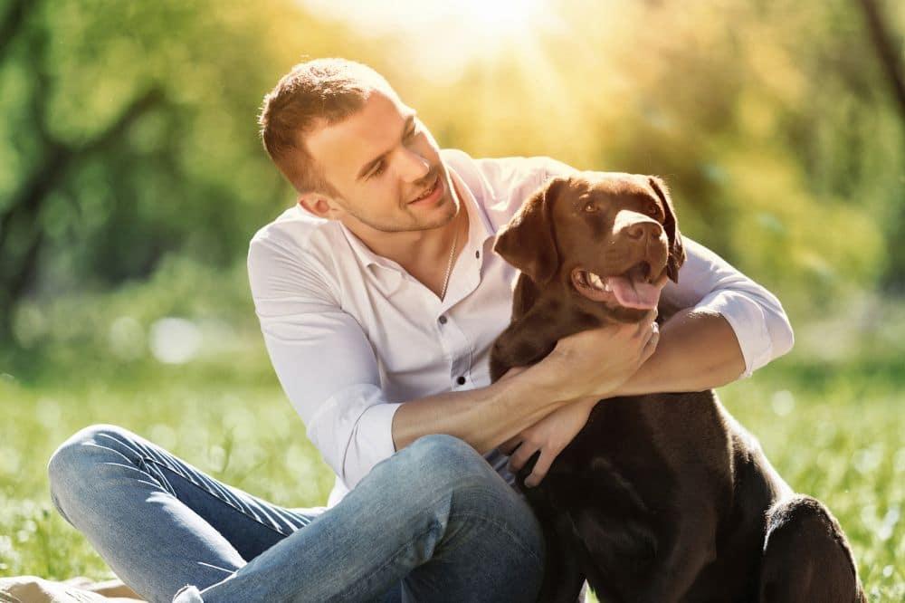 Wie kann ich meinen Labrador vor Krankheiten schützen?