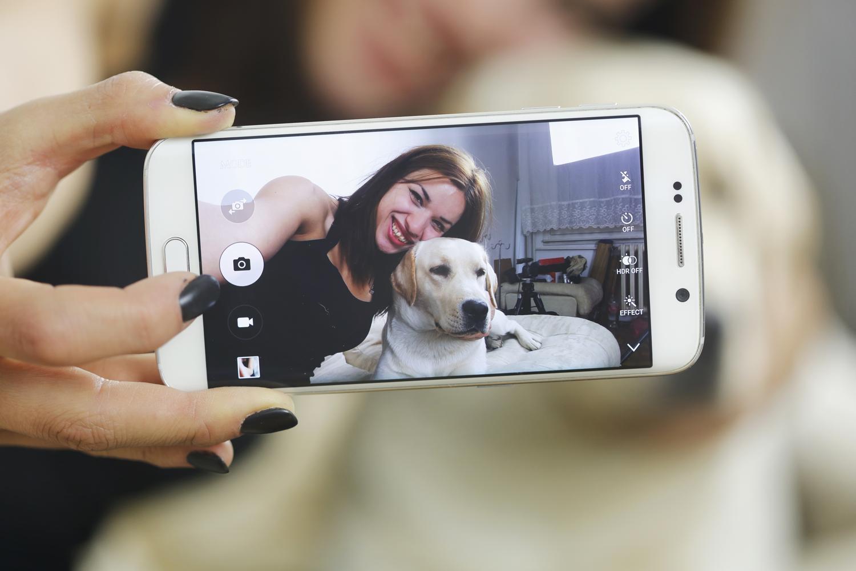 Labrador Videos